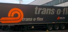 Kühlanhänger-Beschriftung für Trans-o-flex in Stuttgart